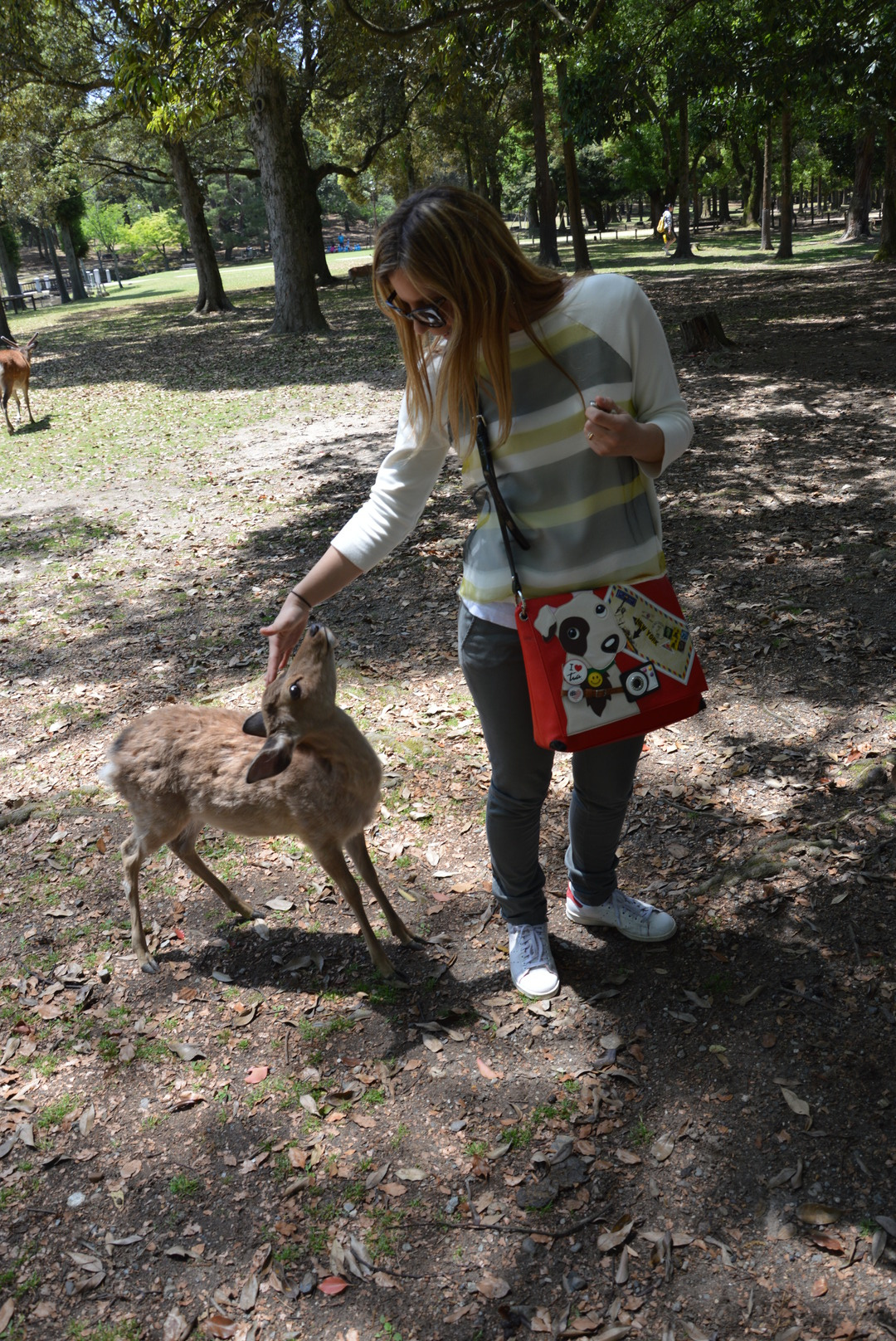 viaggio in Giappone: a Nara