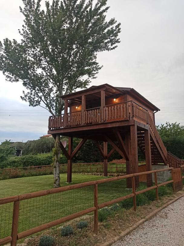 casa sull'albero alle torri di porsenna